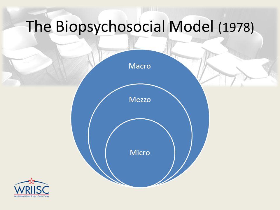 Macro Mezzo Micro The Biopsychosocial Model (1978)
