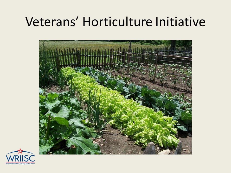 Veterans' Horticulture Initiative