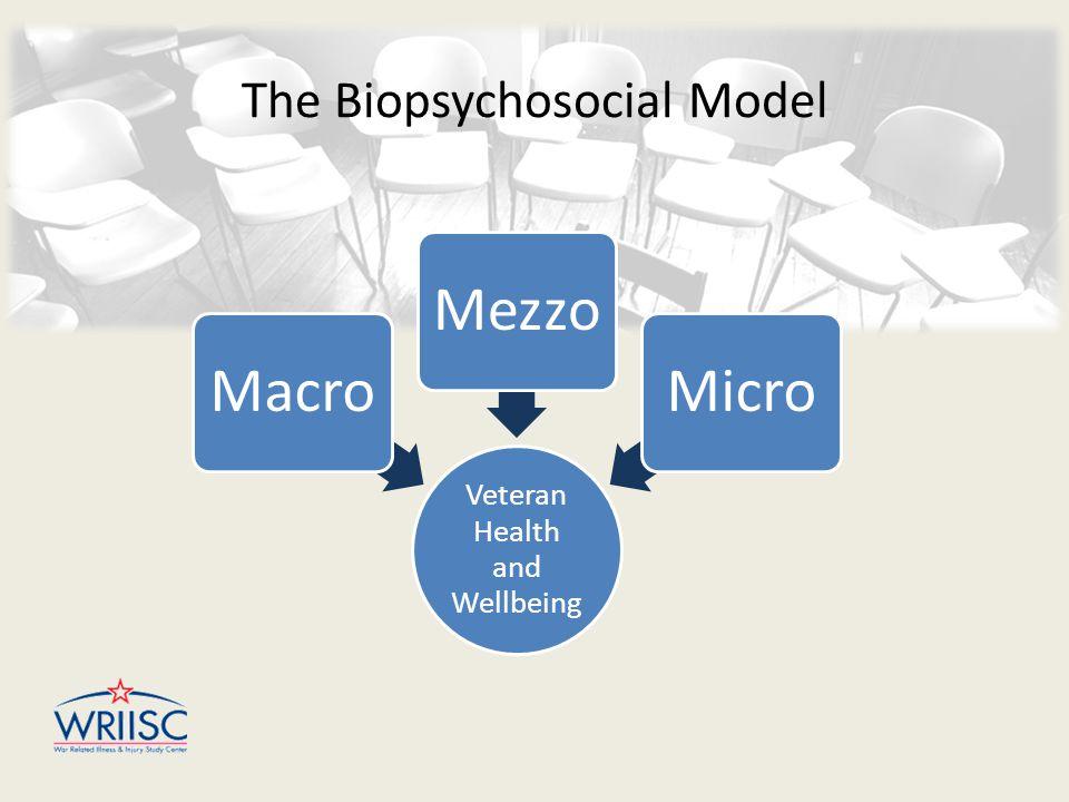 The Biopsychosocial Model Veteran Health and Wellbeing MacroMezzoMicro