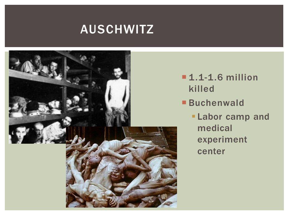 AUSCHWITZ  1.1-1.6 million killed  Buchenwald  Labor camp and medical experiment center
