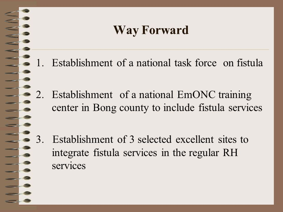 Way Forward 1.Establishment of a national task force on fistula 2.Establishment of a national EmONC training center in Bong county to include fistula services 3.