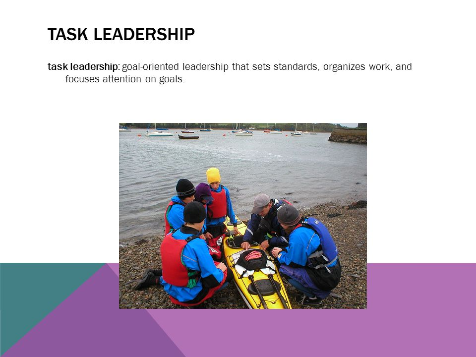 TASK LEADERSHIP task leadership: goal-oriented leadership that sets standards, organizes work, and focuses attention on goals.