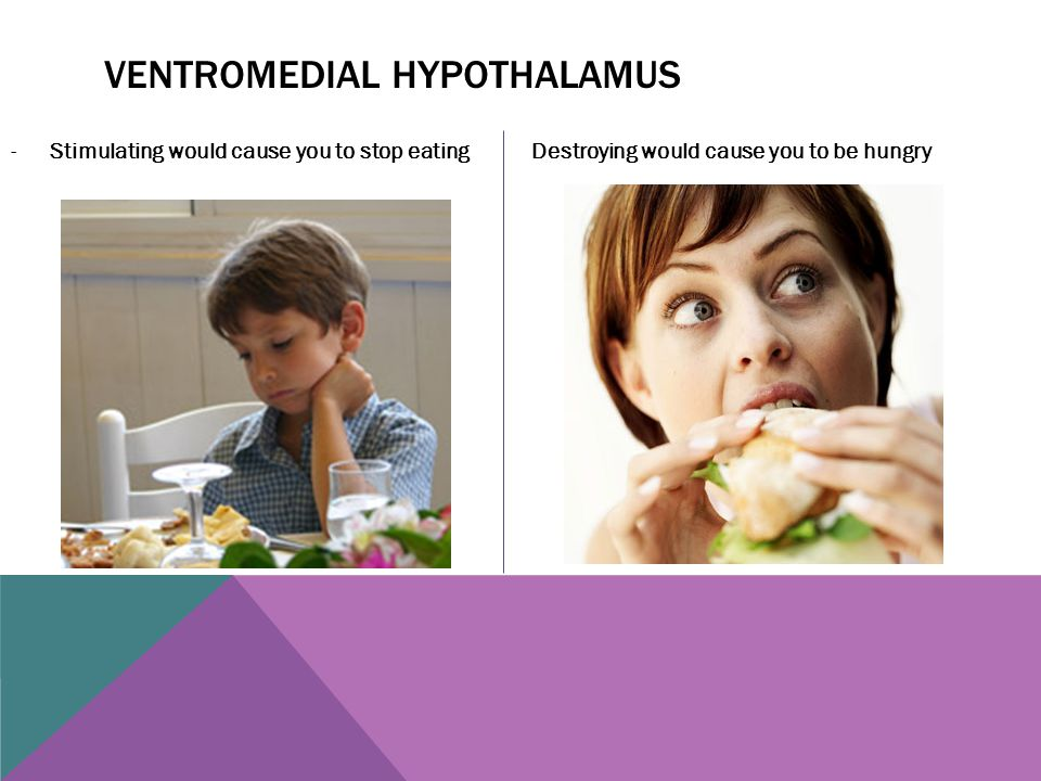 VENTROMEDIAL HYPOTHALAMUS -Stimulating would cause you to stop eating Destroying would cause you to be hungry