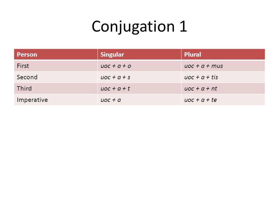 Conjugation 1 PersonSingularPlural Firstuoc + a + ouoc + a + mus Seconduoc + a + suoc + a + tis Thirduoc + a + tuoc + a + nt Imperativeuoc + auoc + a + te