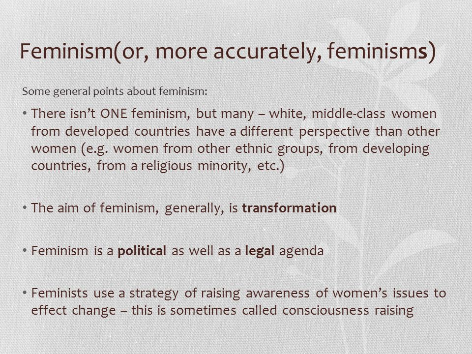 Feminism(or, more accurately, feminisms) There isn't ONE feminism, but many – white, middle-class women from developed countries have a different perspective than other women (e.g.
