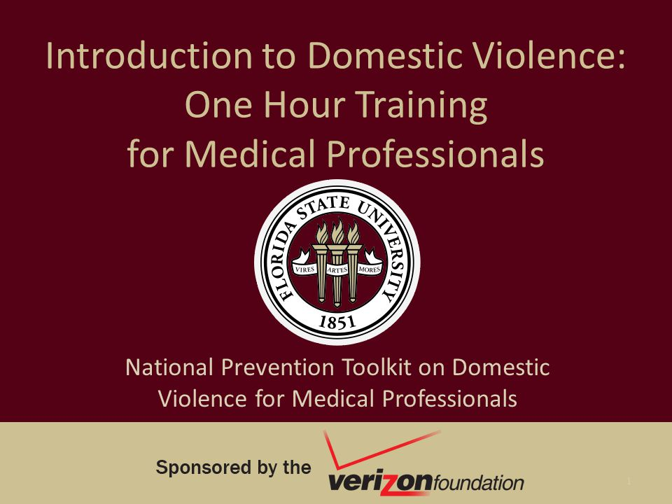 Introduction to Domestic Violence: One Hour Training for Medical Professionals National Prevention Toolkit on Domestic Violence for Medical Profession