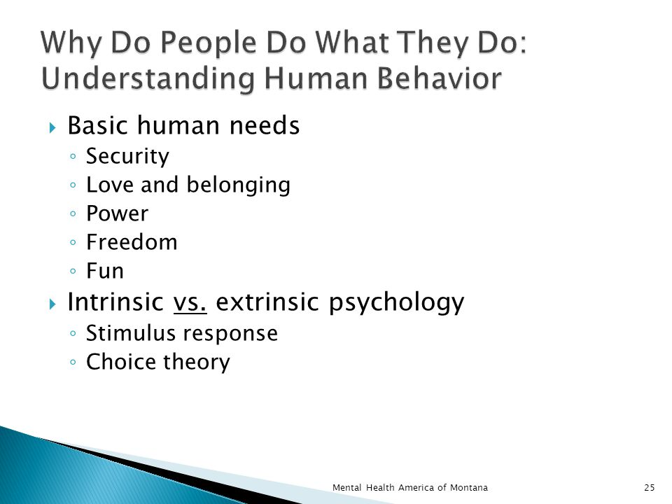  Basic human needs ◦ Security ◦ Love and belonging ◦ Power ◦ Freedom ◦ Fun  Intrinsic vs.