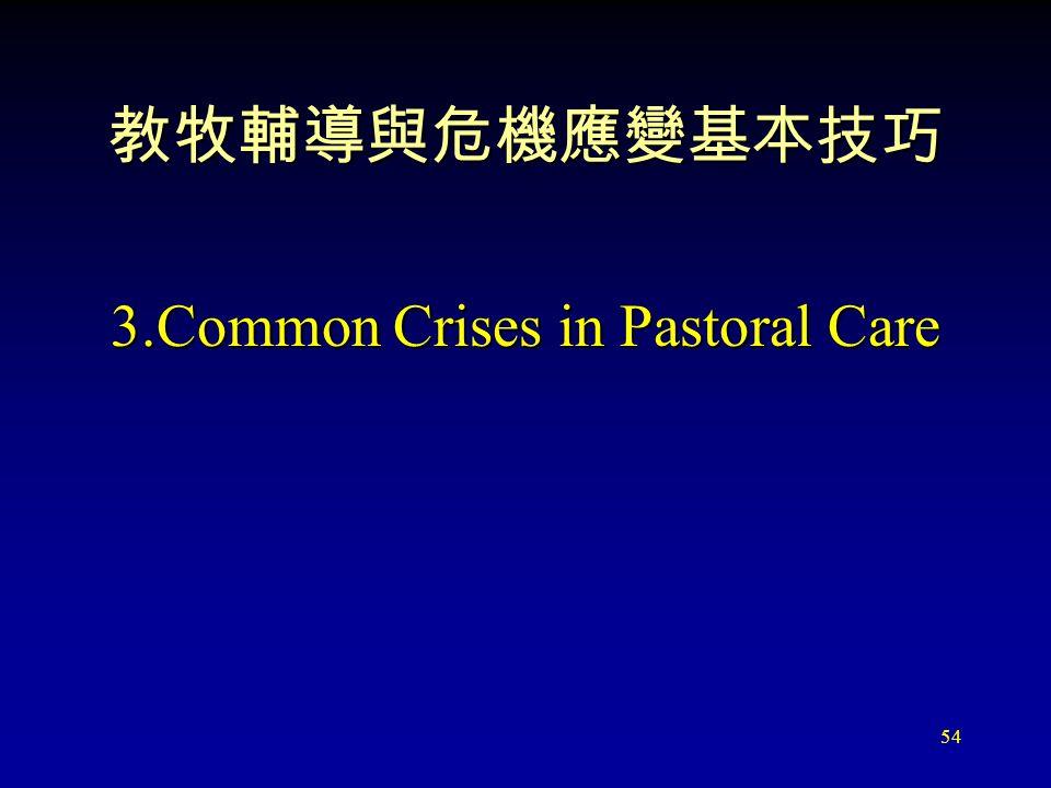 54 教牧輔導與危機應變基本技巧 3.Common Crises in Pastoral Care