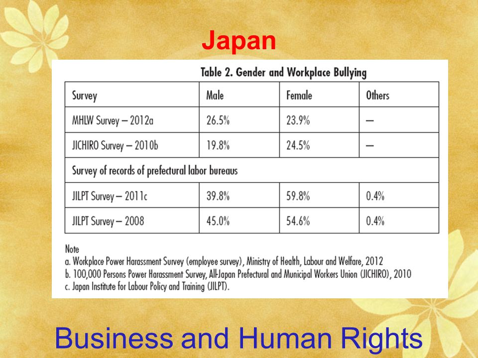 Business and Human Rights Japan