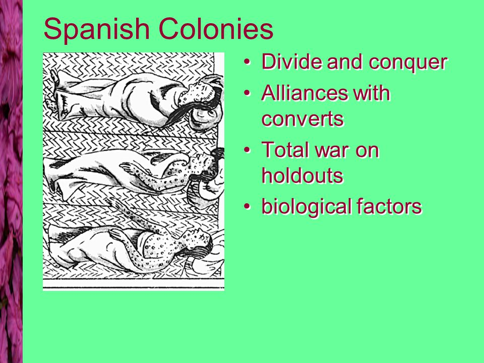 Spanish Colonies Divide and conquer Alliances with converts Total war on holdouts biological factors Divide and conquer Alliances with converts Total war on holdouts biological factors