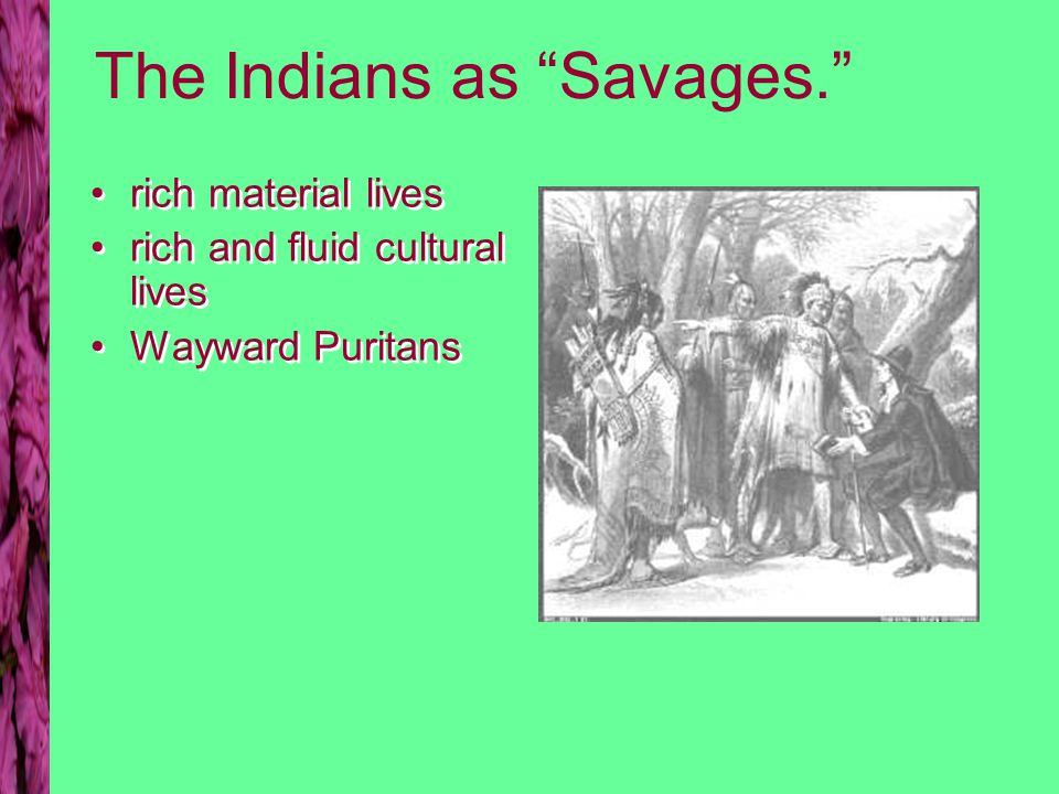 The Indians as Savages. rich material lives rich and fluid cultural lives Wayward Puritans rich material lives rich and fluid cultural lives Wayward Puritans