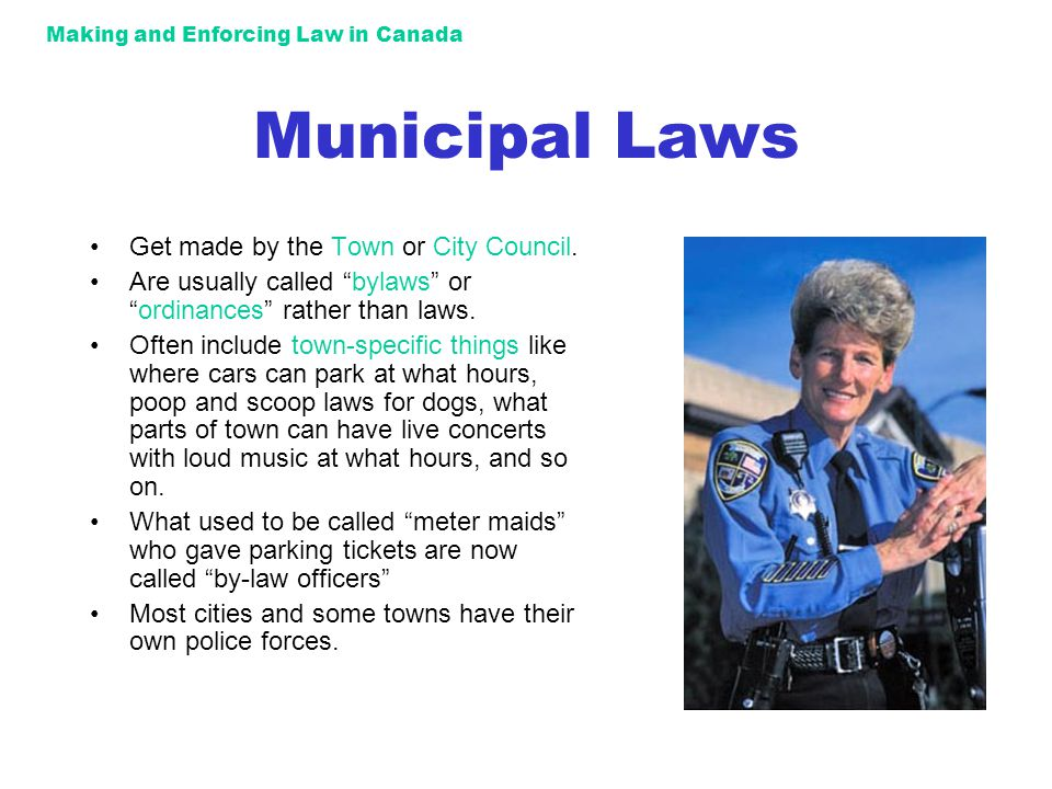 Making and Enforcing Law in Canada Municipal Laws Get made by the Town or City Council.