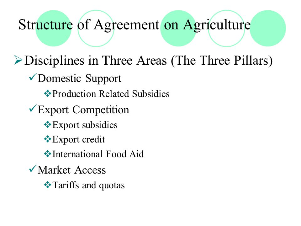 Domestic Support Discipline  Three sets of subsidies Amber Box measures (Article 6.1, Annex 3) Green Box measures (Annex 2) Blue Box measures (Article 6.5)
