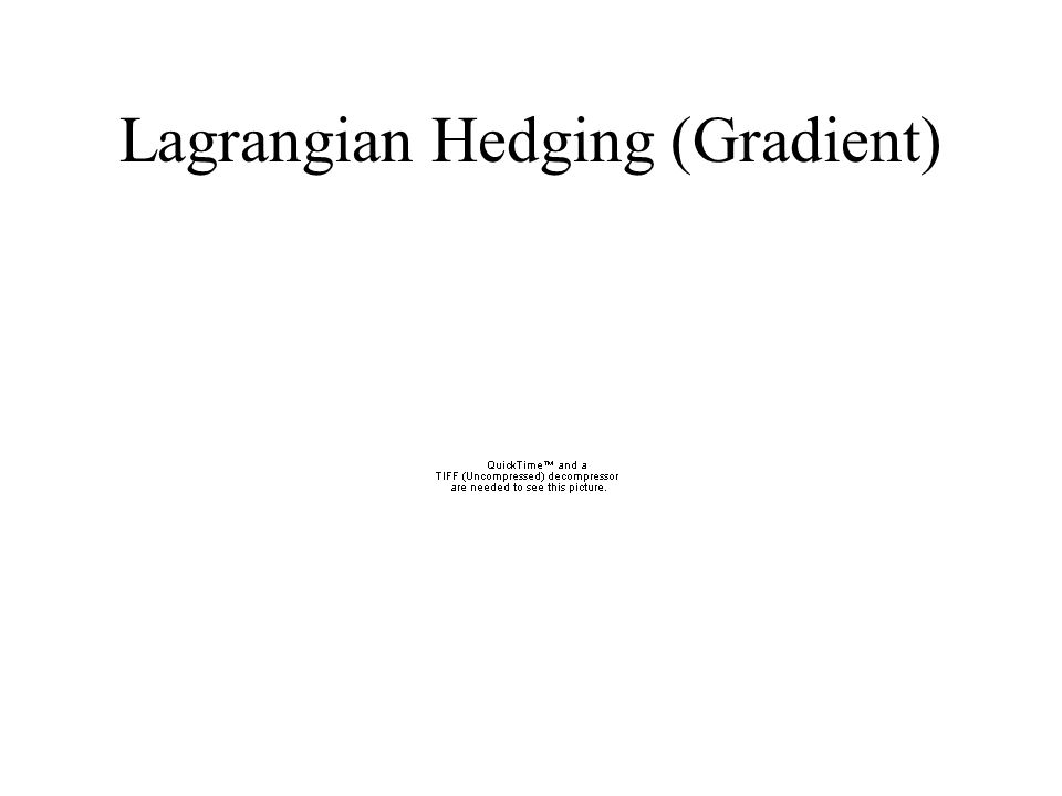Lagrangian Hedging (Gradient)