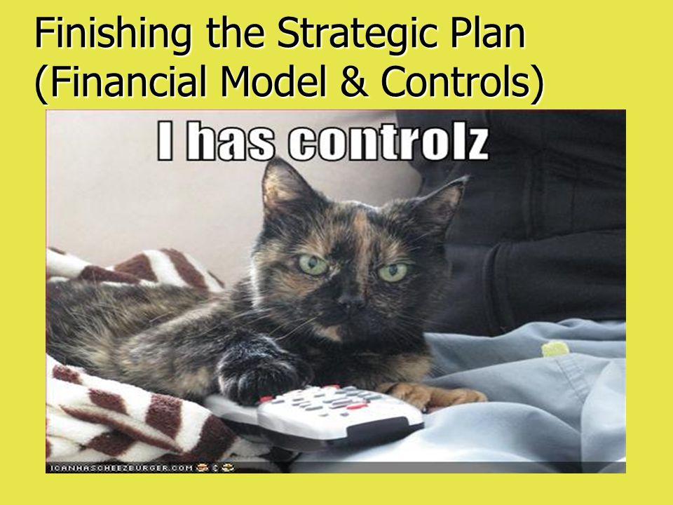 Finishing the Strategic Plan (Financial Model & Controls)