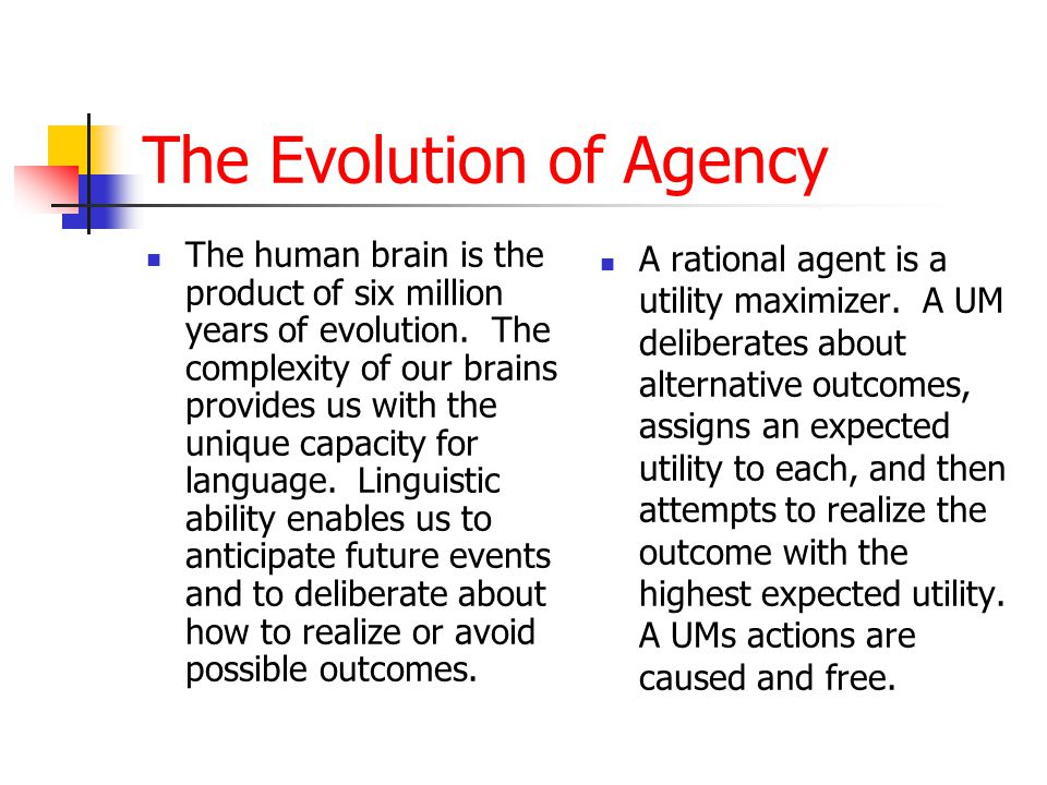 The Evolution of Agency The human brain is the product of six million years of evolution. The complexity of our brains provides us with the unique cap