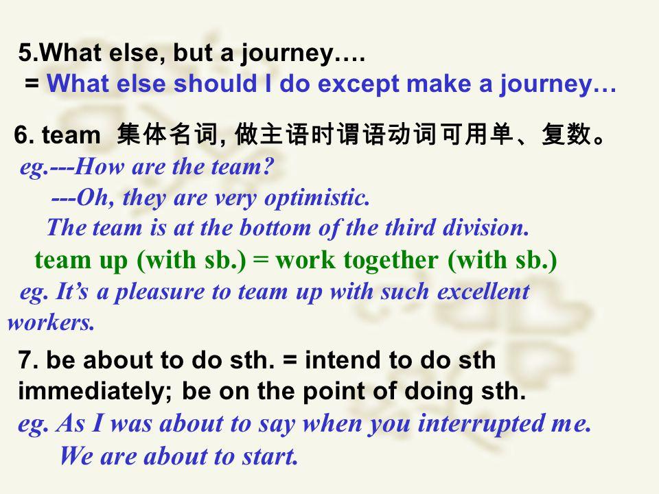 5.What else, but a journey…. = What else should I do except make a journey… 6.