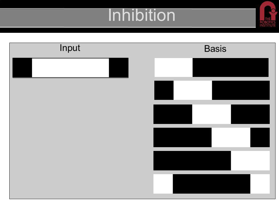 Inhibition Input Basis