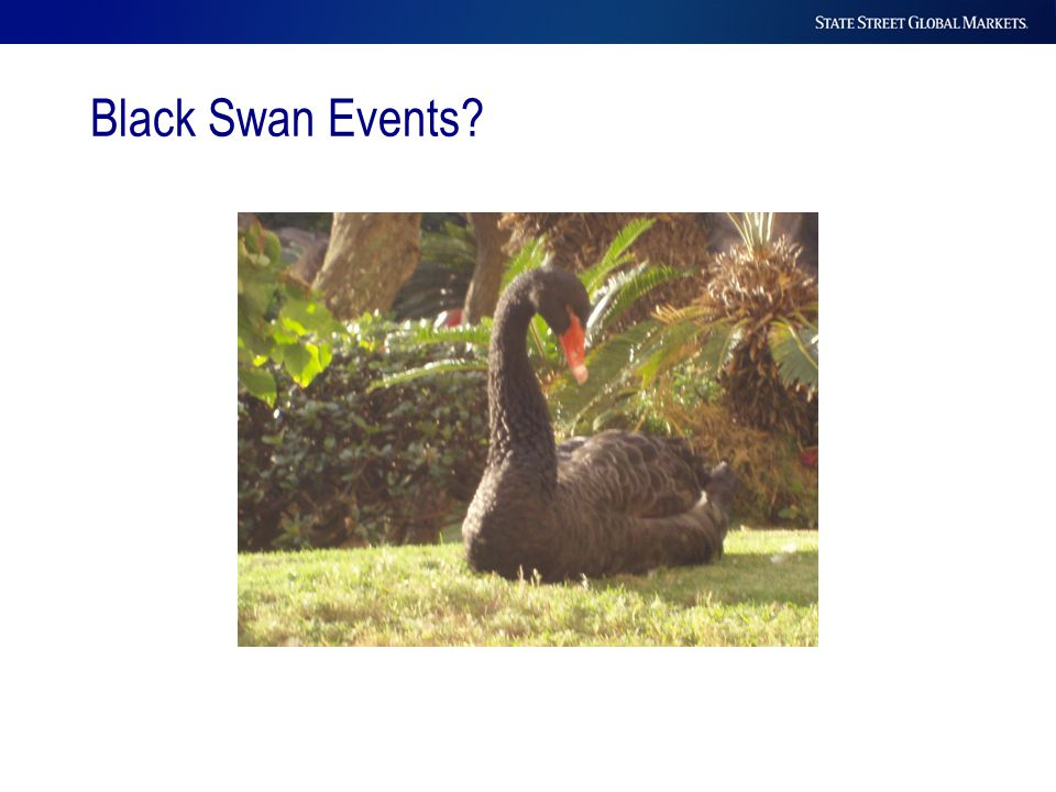 Black Swan Events?