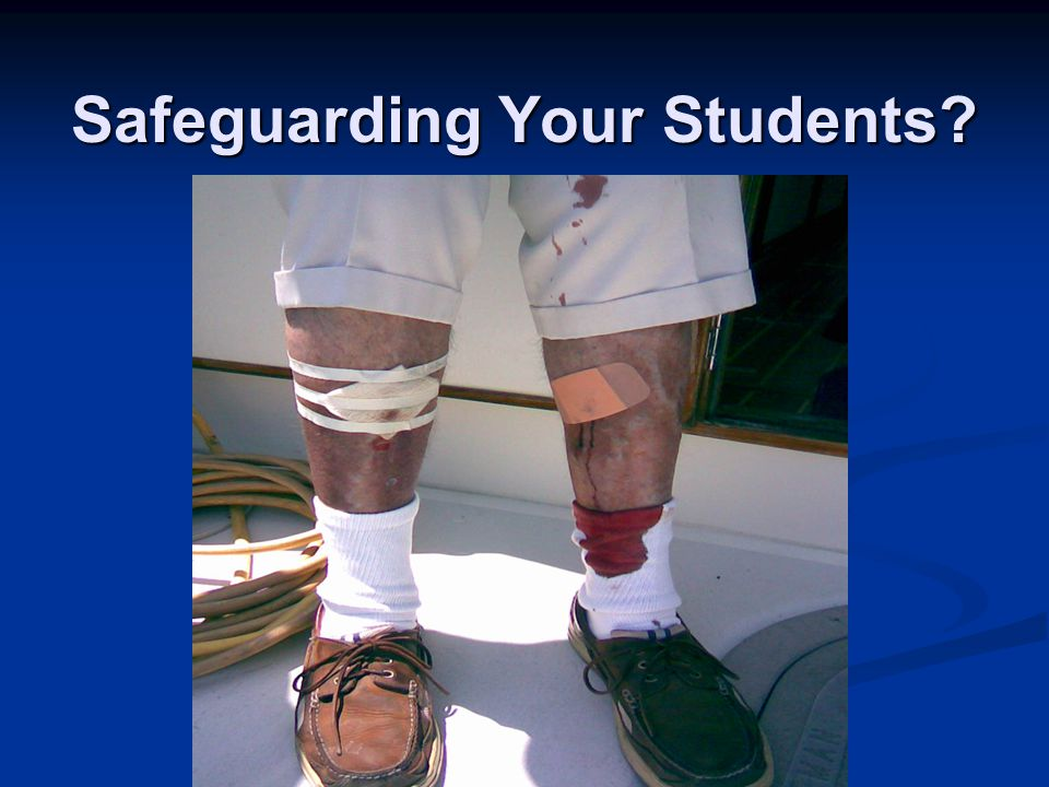 Safeguarding Your Students