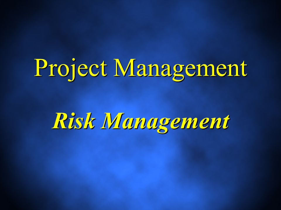 Project Management Risk Management
