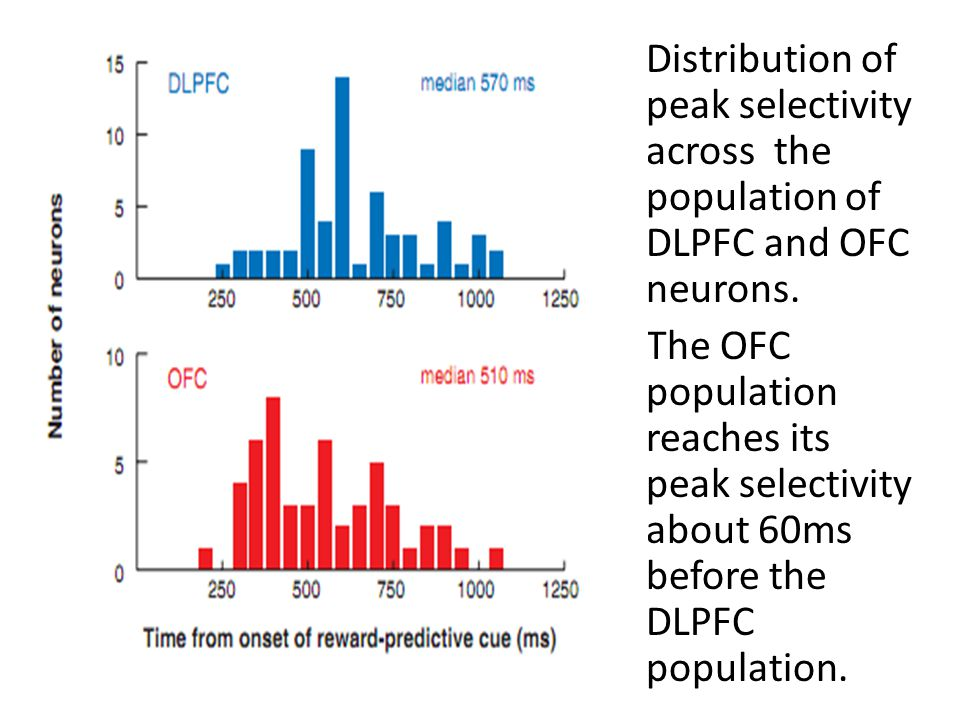 Distribution of peak selectivity across the population of DLPFC and OFC neurons. The OFC population reaches its peak selectivity about 60ms before the