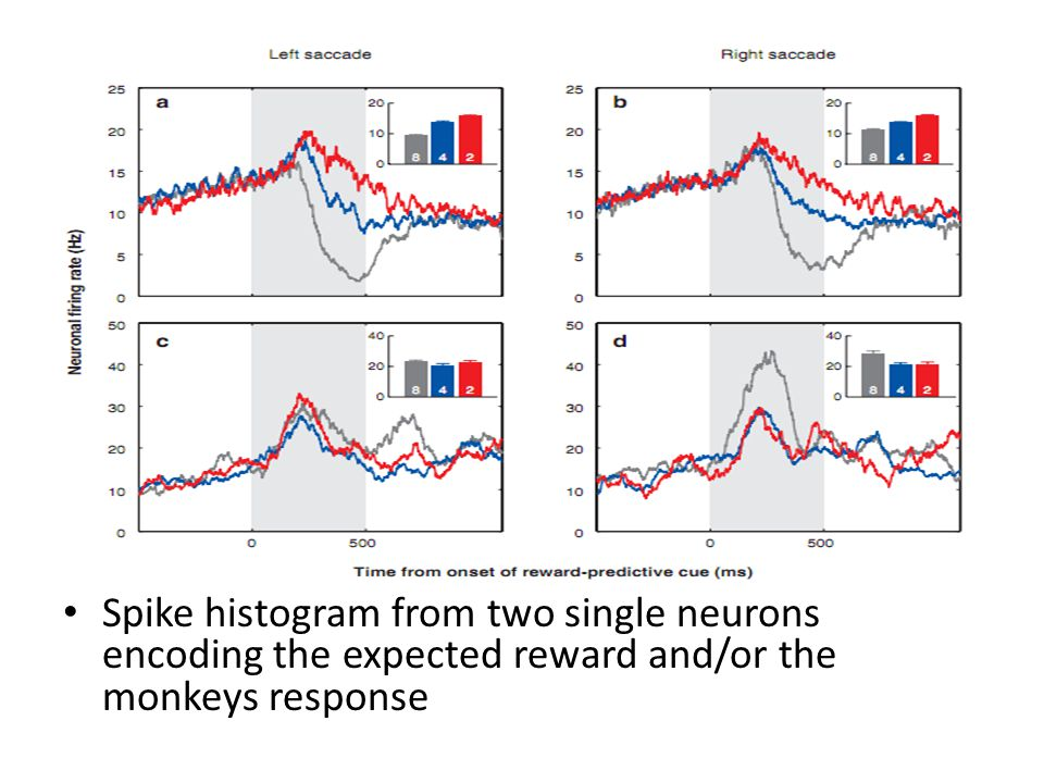 Spike histogram from two single neurons encoding the expected reward and/or the monkeys response