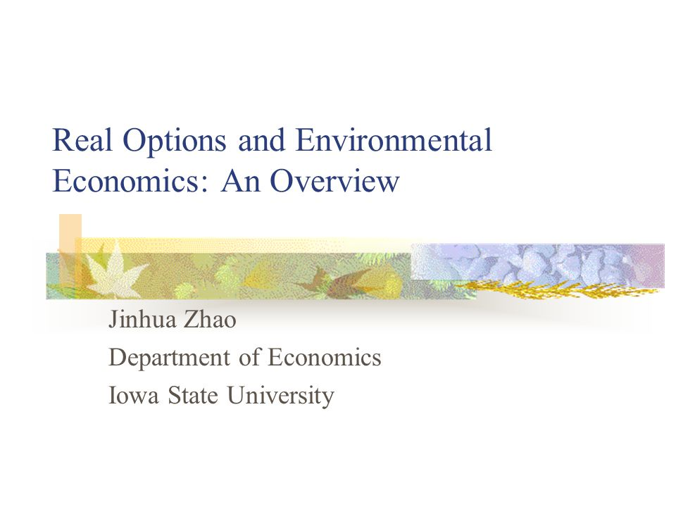 Real Options and Environmental Economics: An Overview Jinhua Zhao Department of Economics Iowa State University
