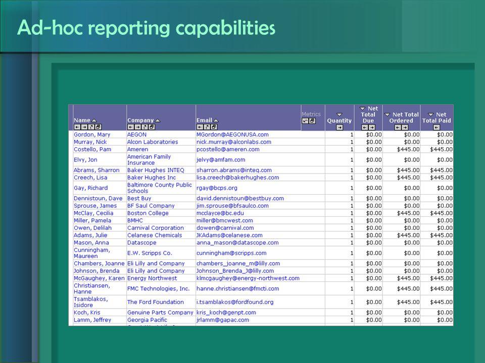Ad-hoc reporting capabilities