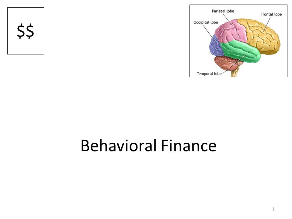1 Behavioral Finance $$