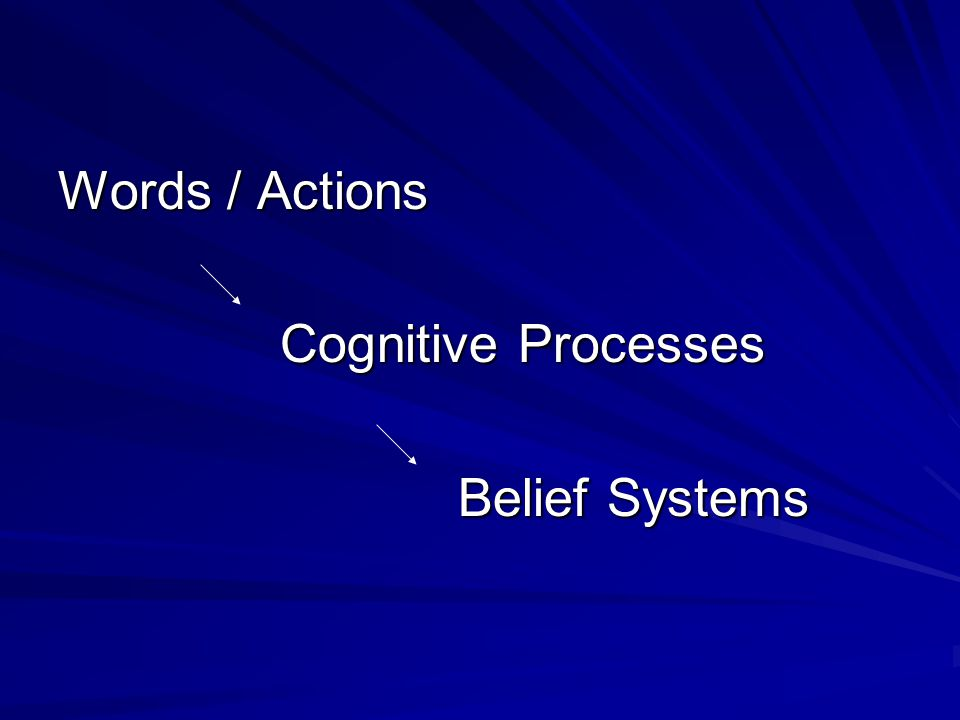 Words / Actions Cognitive Processes Cognitive Processes Belief Systems Belief Systems