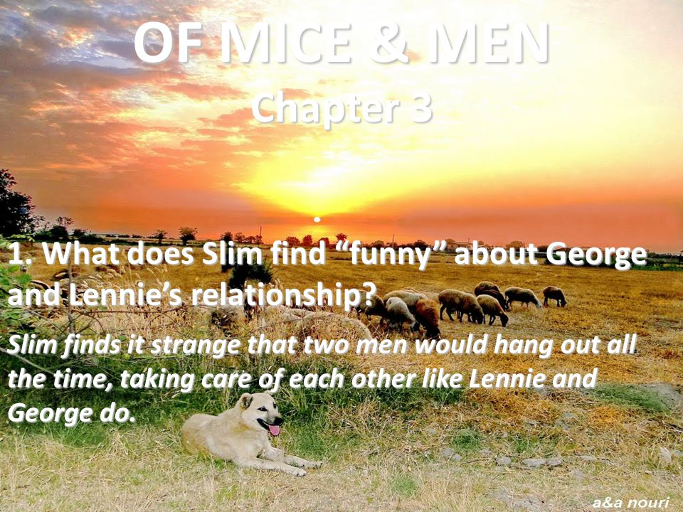 """1. What does Slim find """"funny"""" about George and Lennie's relationship? Slim finds it strange that two men would hang out all the time, taking care of"""