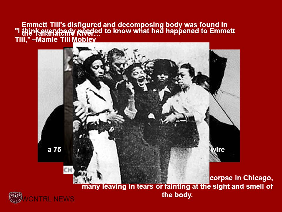 Emmett Till s disfigured and decomposing body was found in the Tallahatchie River… I think everybody needed to know what had happened to Emmett Till, –Mamie Till Mobley a 75 lb.
