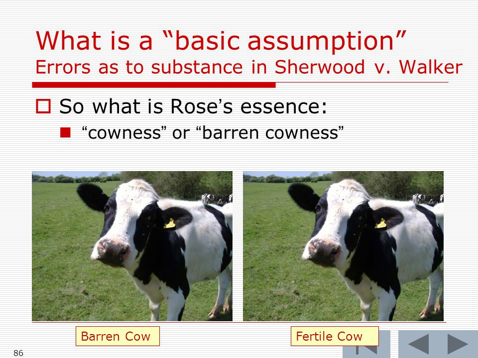 What is a basic assumption Errors as to substance in Sherwood v.