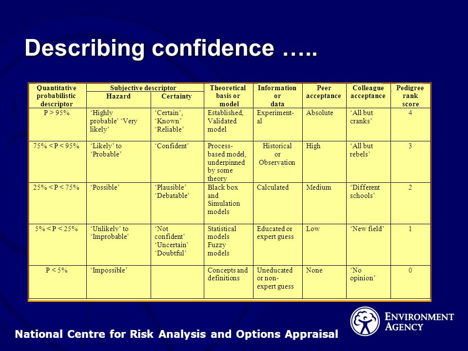 National Centre for Risk Analysis and Options Appraisal Describing confidence …..