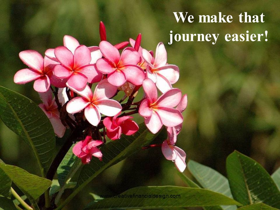 www.creativefinancialdesign.com Like every journey there must be a beginning!