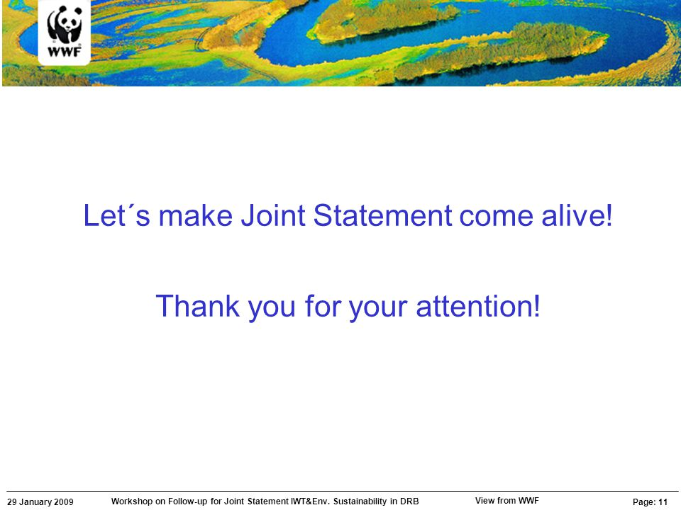 29 January 2009 Workshop on Follow-up for Joint Statement IWT&Env. Sustainability in DRB Page: 11 View from WWF Let´s make Joint Statement come alive!