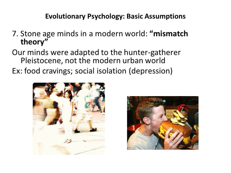 "Evolutionary Psychology: Basic Assumptions 7. Stone age minds in a modern world: ""mismatch theory"" Our minds were adapted to the hunter-gatherer Pleis"