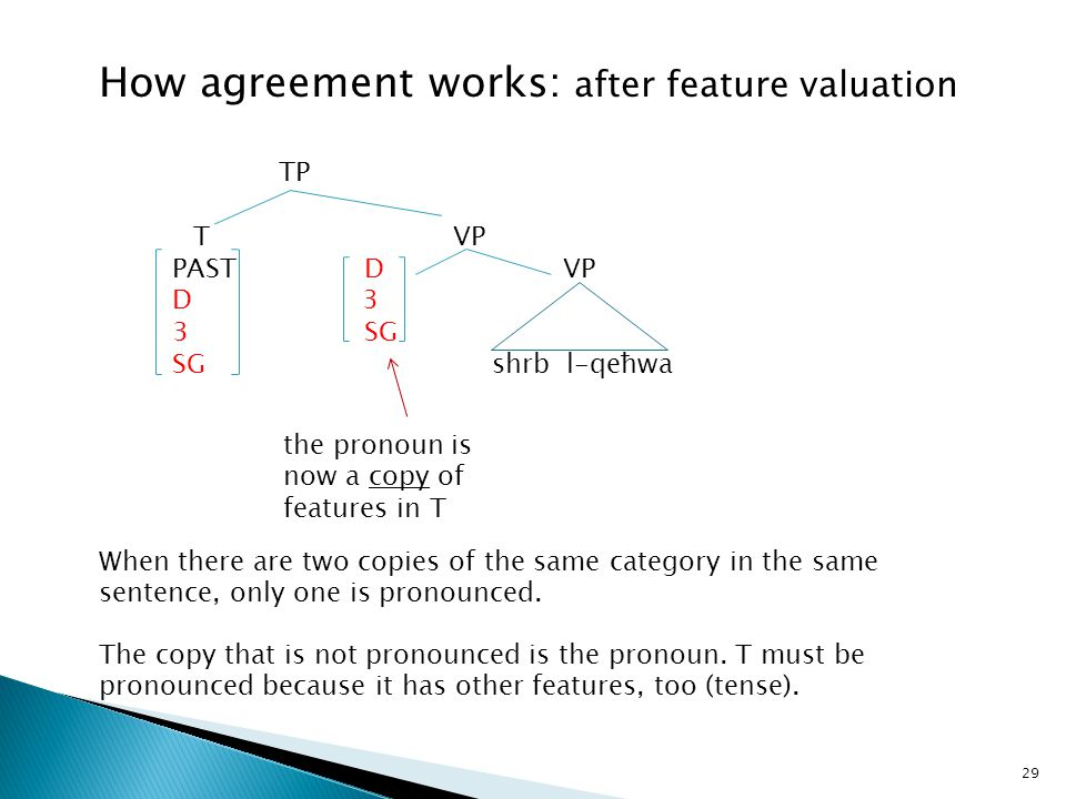 29 TP T VP PAST D VP D 3 3 SG SGshrb l-qeħwa the pronoun is now a copy of features in T How agreement works: after feature valuation When there are tw