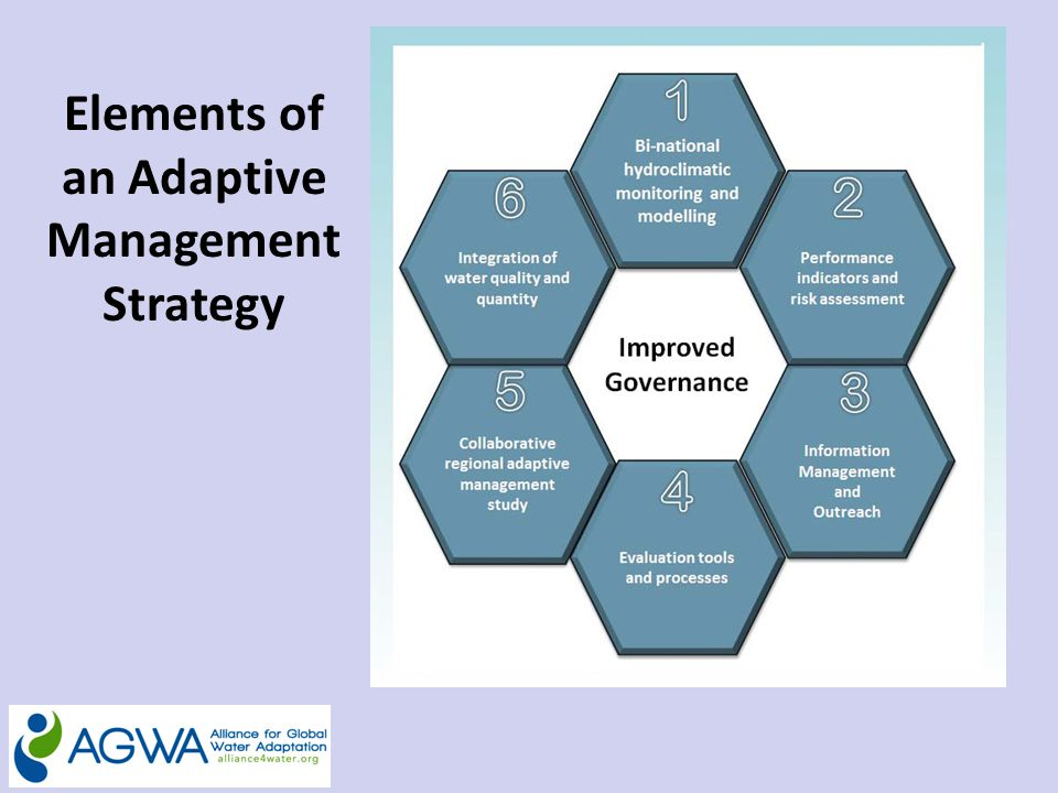 Elements of an Adaptive Management Strategy