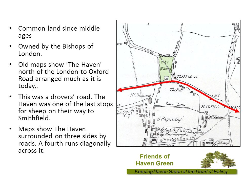 Keeping Haven Green at the Heart of Ealing Common land since middle ages Owned by the Bishops of London.
