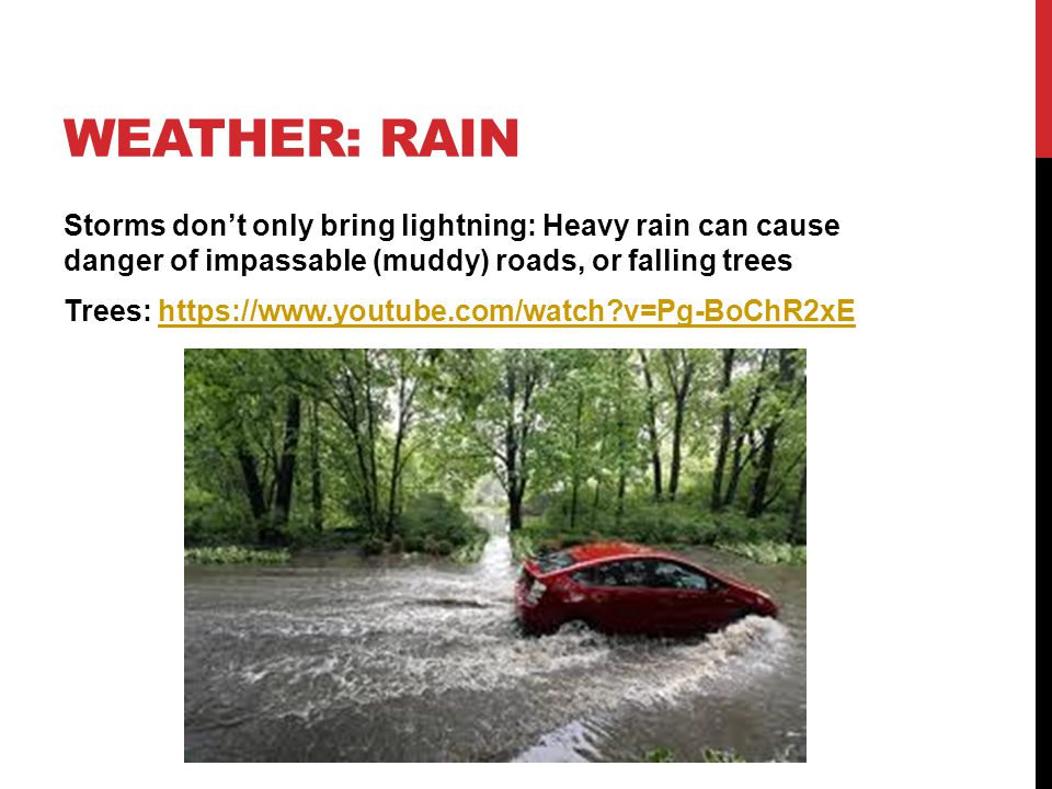 WEATHER: RAIN Storms don't only bring lightning: Heavy rain can cause danger of impassable (muddy) roads, or falling trees Trees: https://www.youtube.com/watch v=Pg-BoChR2xEhttps://www.youtube.com/watch v=Pg-BoChR2xE