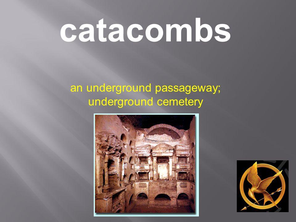 catacombs an underground passageway; underground cemetery