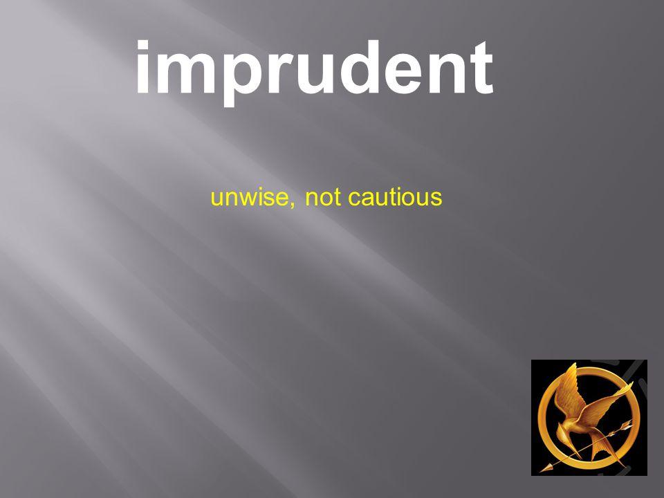 imprudent unwise, not cautious