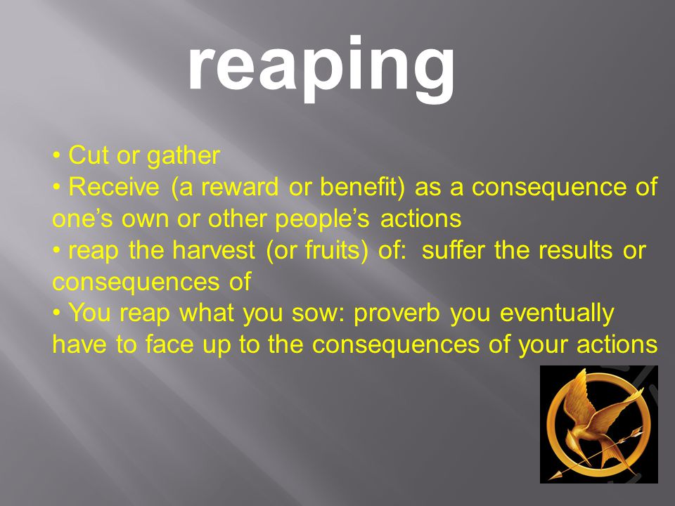 reaping Cut or gather Receive (a reward or benefit) as a consequence of one's own or other people's actions reap the harvest (or fruits) of: suffer th
