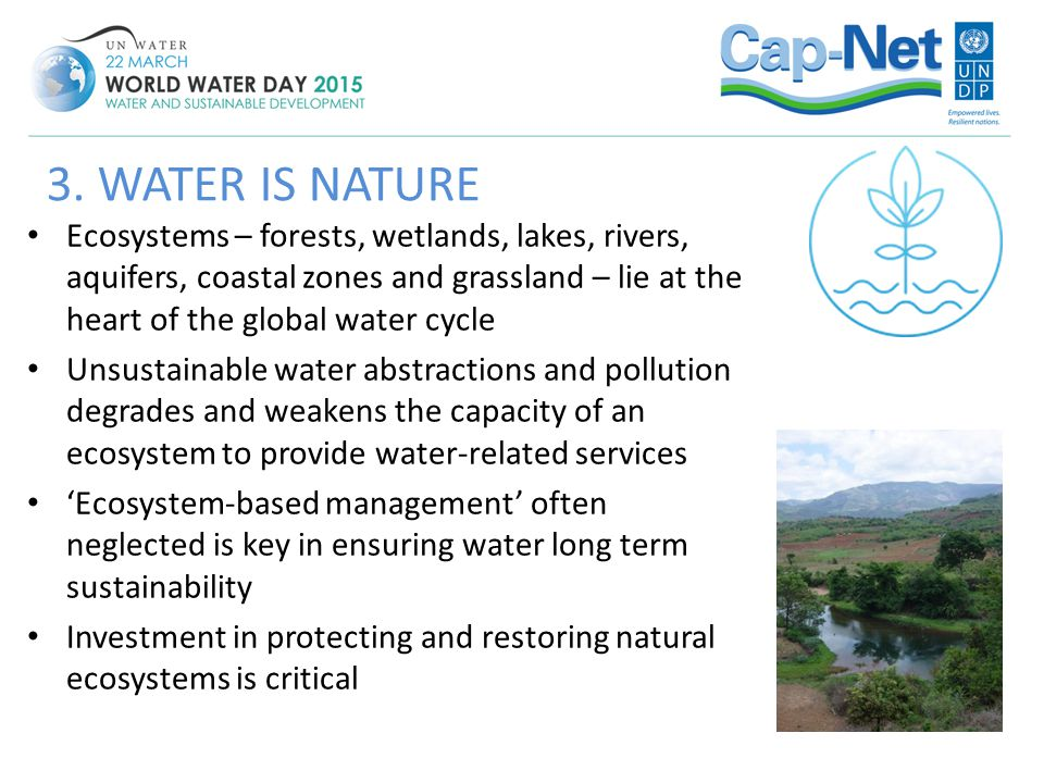 Ecosystems – forests, wetlands, lakes, rivers, aquifers, coastal zones and grassland – lie at the heart of the global water cycle Unsustainable water