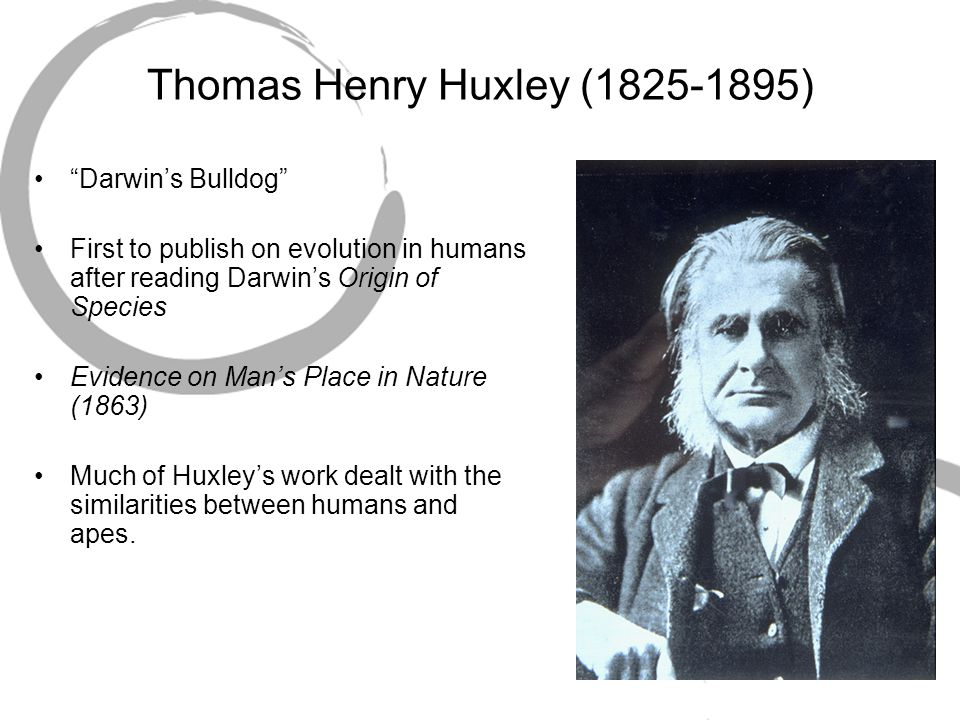 "Thomas Henry Huxley (1825-1895) ""Darwin's Bulldog"" First to publish on evolution in humans after reading Darwin's Origin of Species Evidence on Man's"
