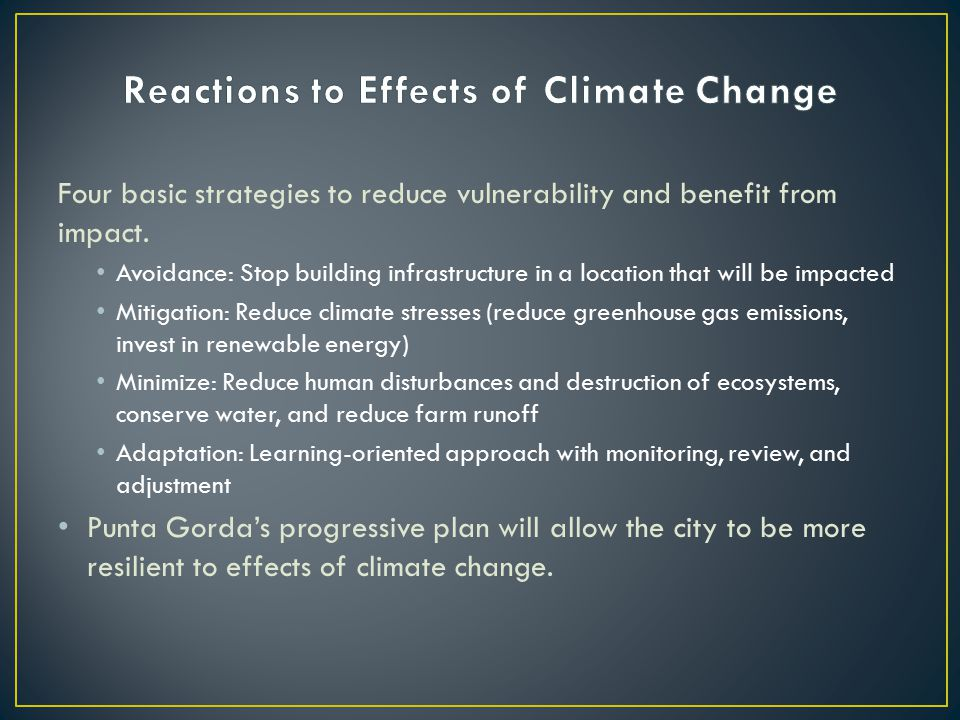 Four basic strategies to reduce vulnerability and benefit from impact.