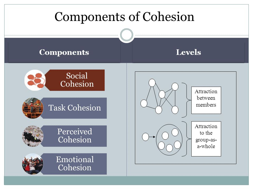 Components Levels Social Cohesion Task Cohesion Perceived Cohesion Emotional Cohesion Components of Cohesion Attraction between members Attraction to