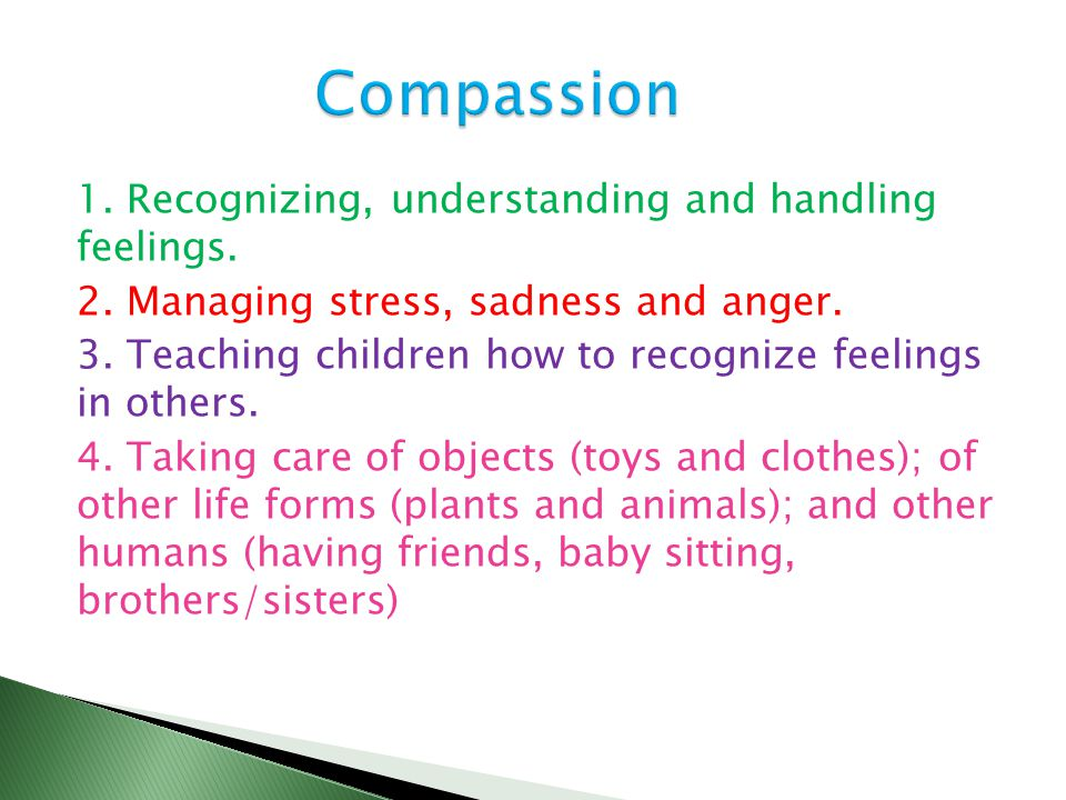 1. Recognizing, understanding and handling feelings. 2. Managing stress, sadness and anger. 3. Teaching children how to recognize feelings in others.
